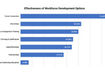 effectiveness-workforce-development-options
